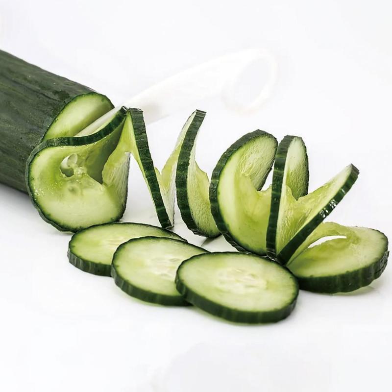 「きゅうり」の育て方・栽培のコツ(家庭菜園)