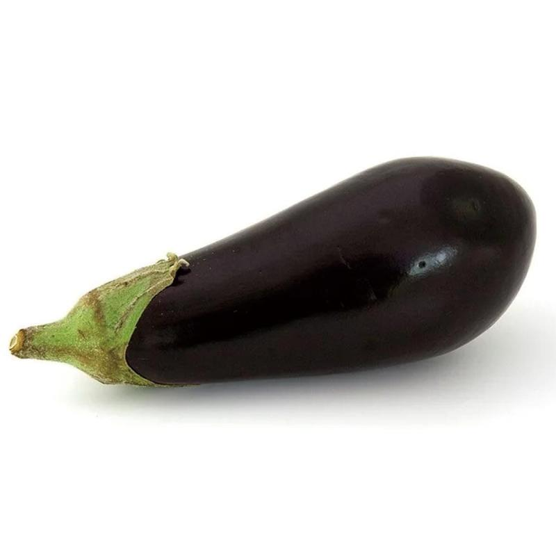 「ナス」の育て方・栽培のコツ(家庭菜園)