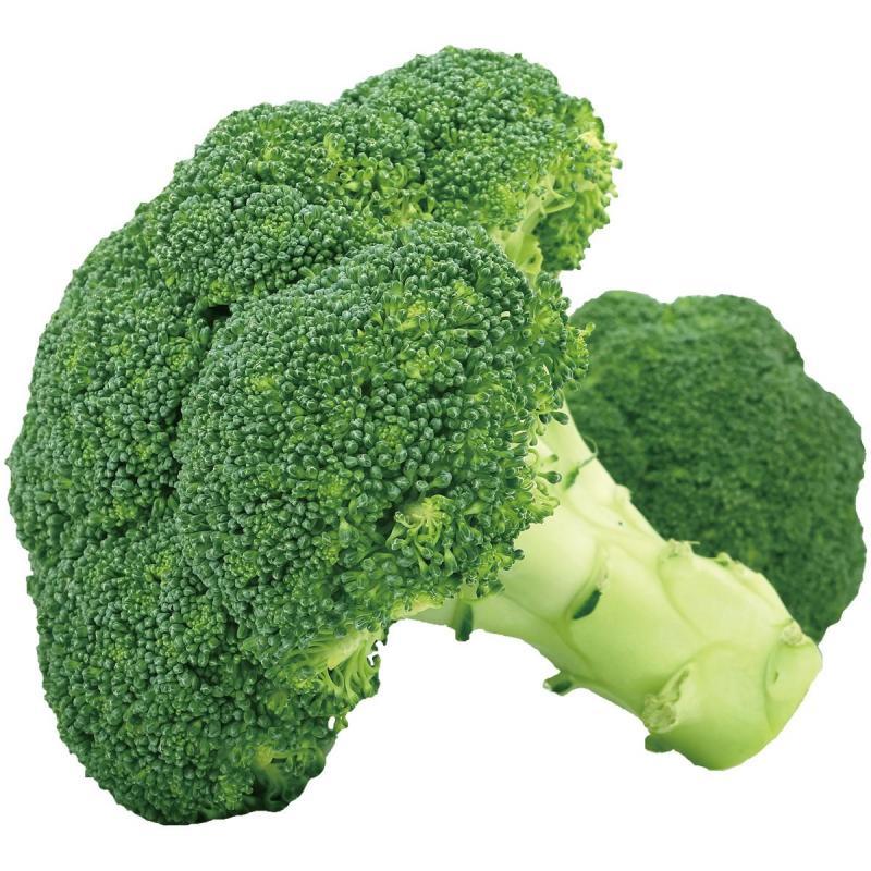 「ブロッコリー」の育て方・栽培のコツ(家庭菜園)