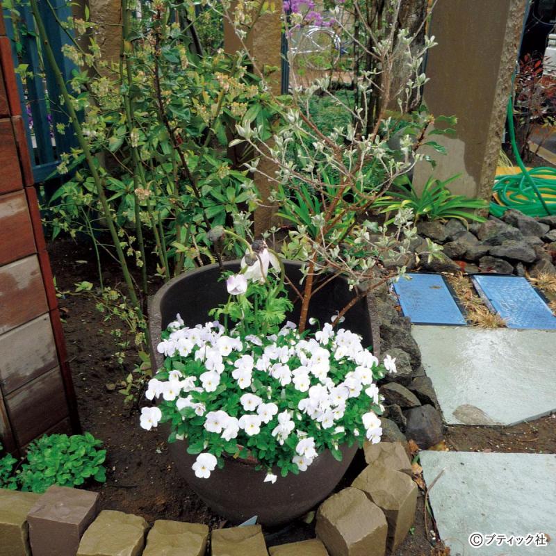 プロが教える庭のアイデア!「既存物・廃棄物を再利用する」やり方