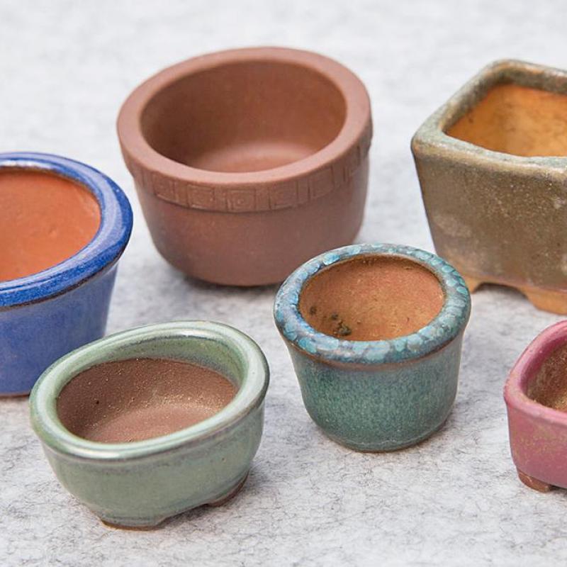 超ミニ盆栽の基礎「材料・道具をそろえる 」について