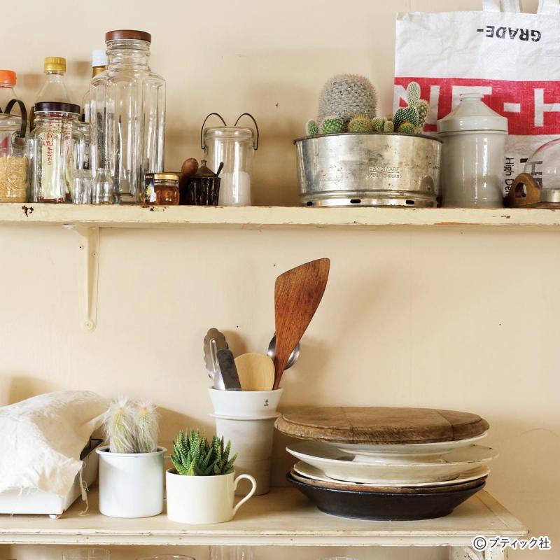 【多肉植物がある暮らし】おしゃれな飾り方!9選
