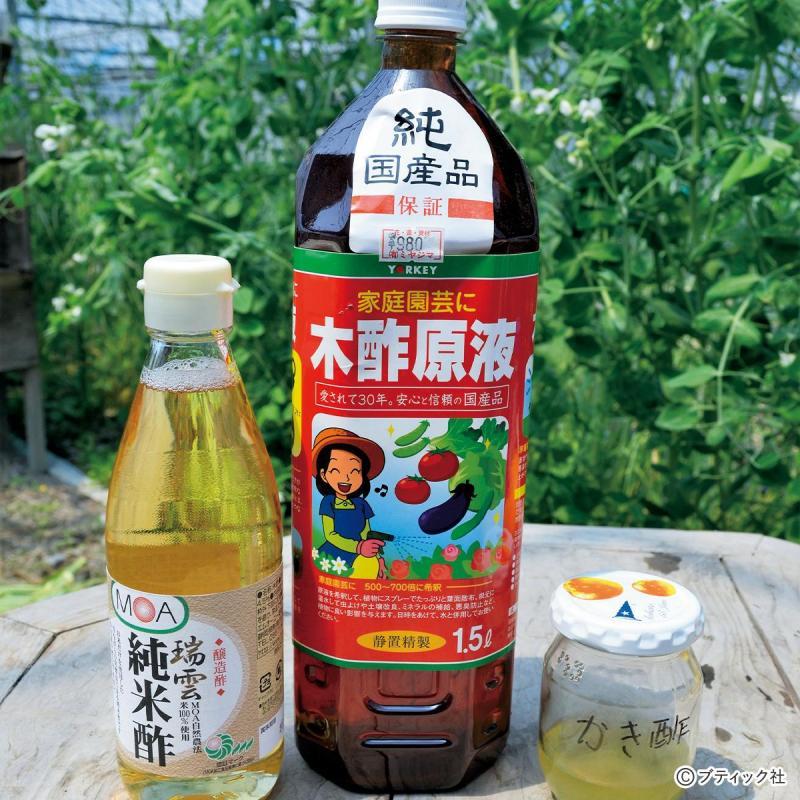 園芸のコツ「お酢で畑の生き物を活性化する方法」について