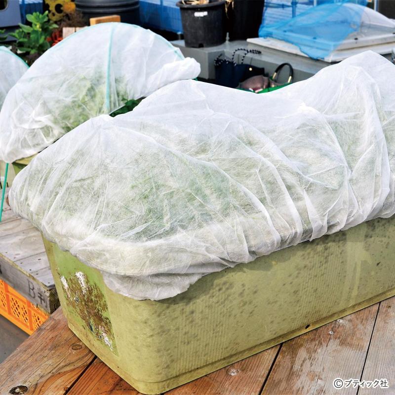 プランター栽培用保温・保護カバー「プランターキャップ」の解説